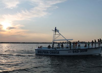 Dolphin_Cruise_boat-2